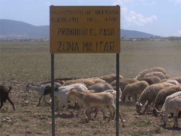 Maniobras militares de las cabras de la legión