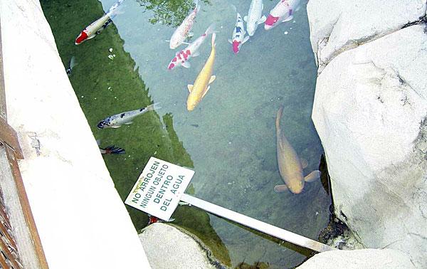 Cartel-No-Arrojar-Agua