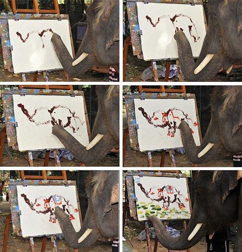 Elefante que pinta Elefante (C) Reuters / Daily Telegraph