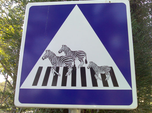 Paso de cebras