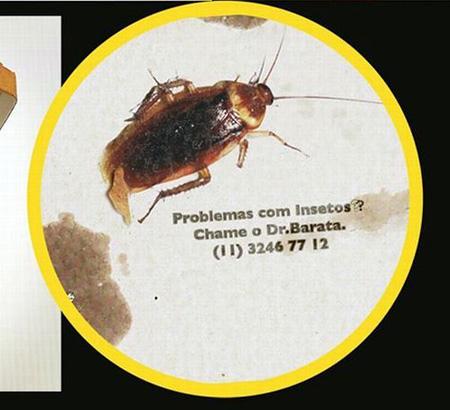 Publicidad Exterminador insectos