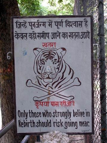 Tigre ñam ñam WTF